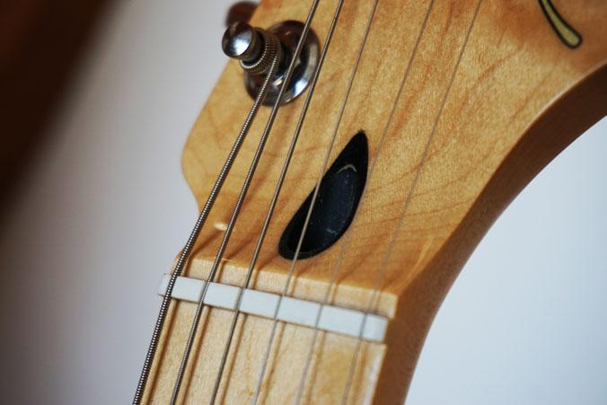 E-Gitarre mit Stahlsaiten Gitarrensaiten kaufen